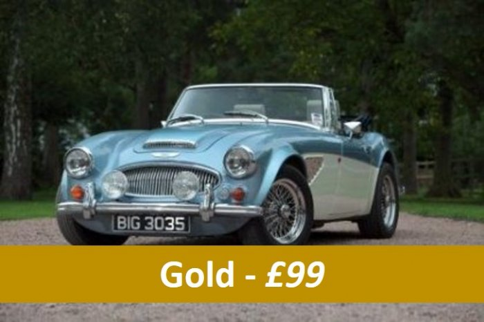 Classic car gold taster experiences for £99